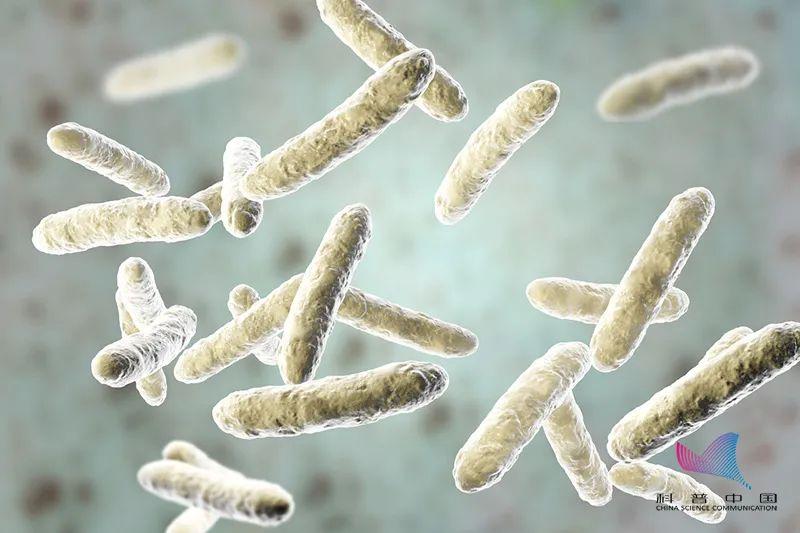 益生菌能防治新冠病毒?知名品牌被罚45万!这些人食用益生菌要慎重…
